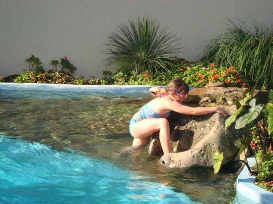 Paihia Pacific Resort Hotel : Fun in the pool