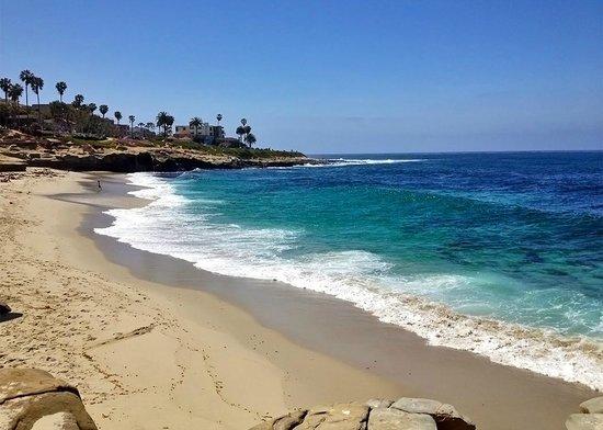 Nice Hotels In La Jolla Ca