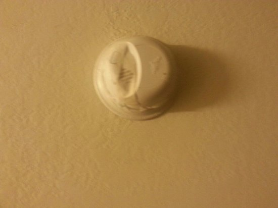 Motel 6 Lansing: One of many smoke detectors melted.