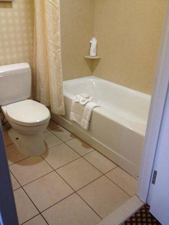 Hilton Garden Inn Mystic Groton: Hilton Garden Inn Groton, bathroom