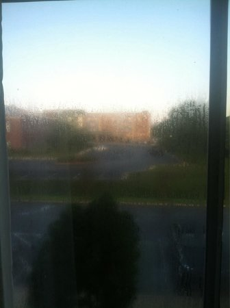 Fairfield Inn & Suites Jackson Airport: Windows very hard to see out of!!