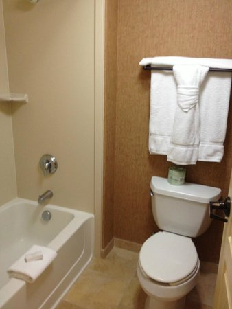 Homewood Suites Santa Fe: one of the bathrooms