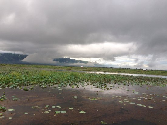 Myanmar Treasure Inle Lake : View from lake view room