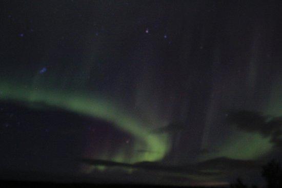 Northern Alaska Tour Company: Aurora Borealis