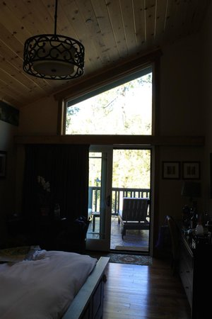The Grand Idyllwild Lodge: Room with a view