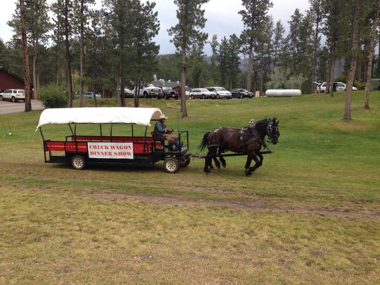Mount Rushmore KOA at Palmer Gulch Resort: Chuck wagon dinner