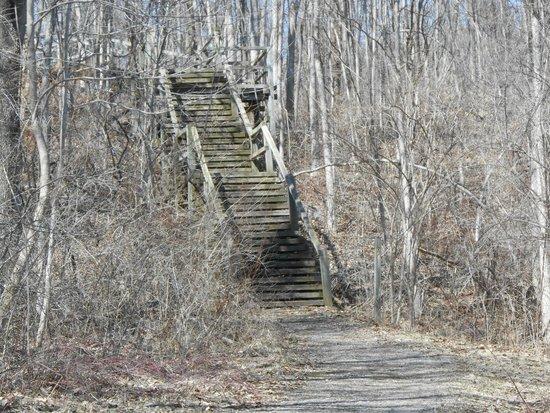 Trail signs picture of potato creek state park north for Potato creek cabins