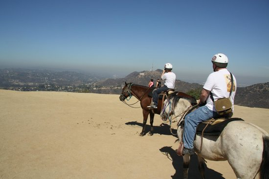 Sunset Ranch Hollywood: Looking back the way we came - under the Hollywood sign
