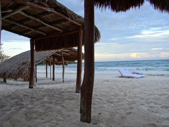 Hotel Esencia: Beach