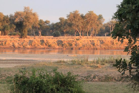 Wildlife Camp: view from the camp site