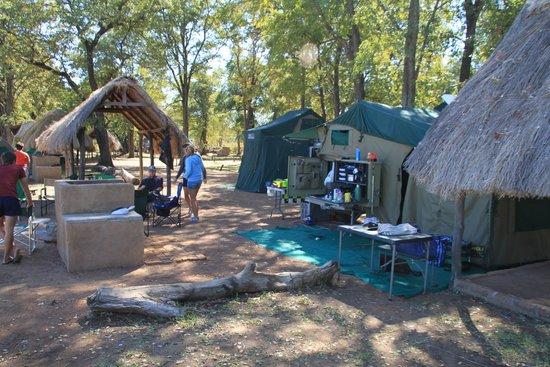 Wildlife Camp: the camp site