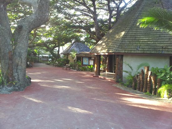 Hotel Kou-Bugny : bungalow
