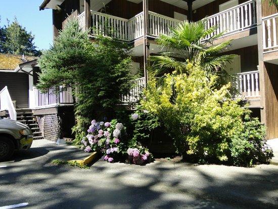 Deer Lodge Motel: Garden near parking