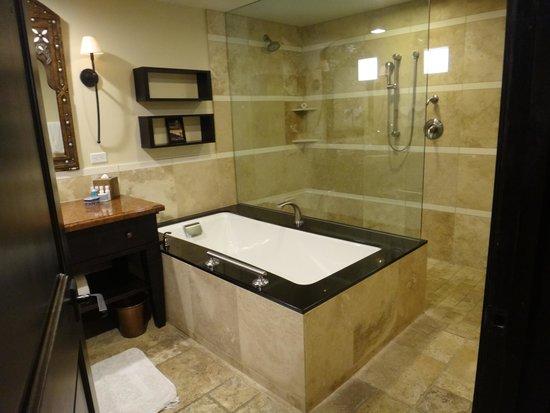 Omni Scottsdale Resort & Spa at Montelucia: Bathroom tub & shower