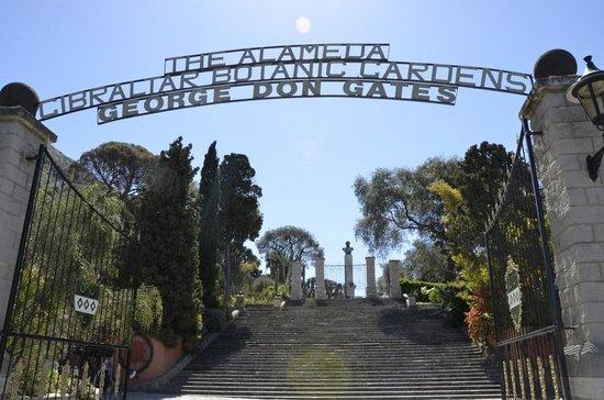 Gibraltar Botanic Gardens (The Alameda) : Вход в Сад Аламеда