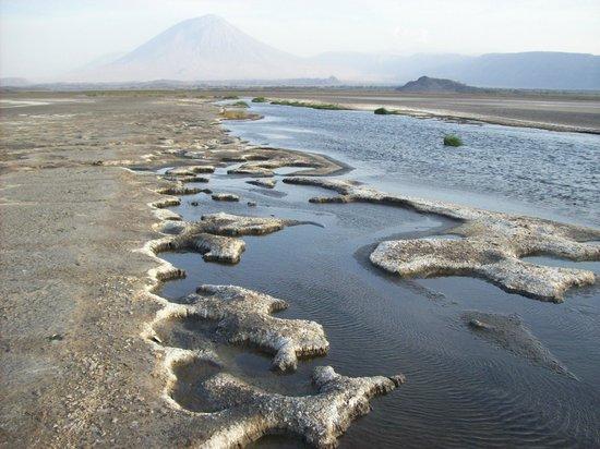 Ol Doinyo Lengai: Lake Natron And Oldoinyo Lengai