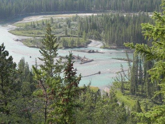 Bow River lige uden for Banff