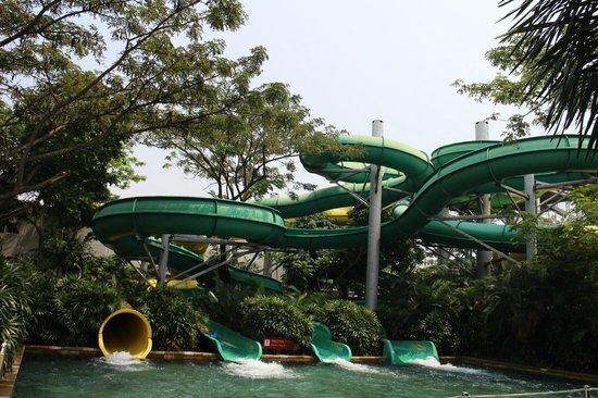 Waterbom Jakarta: The slides.