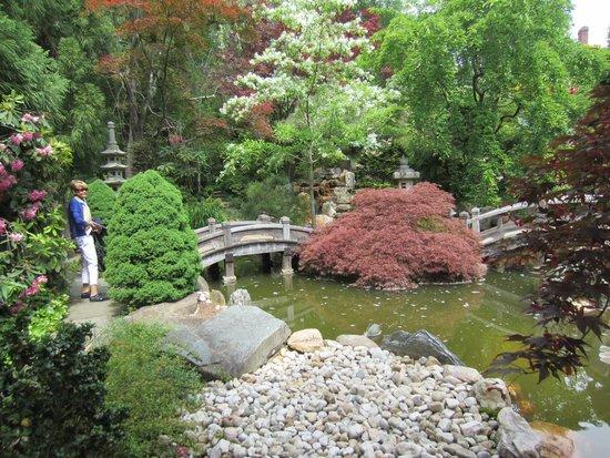 Hillwood Museum & Gardens : the Japanese Garden at Hillwood