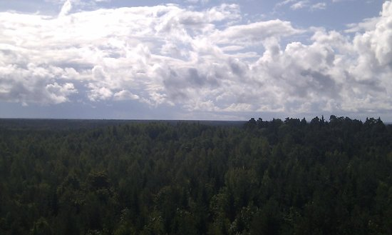 Viidumae Ecological Reserve