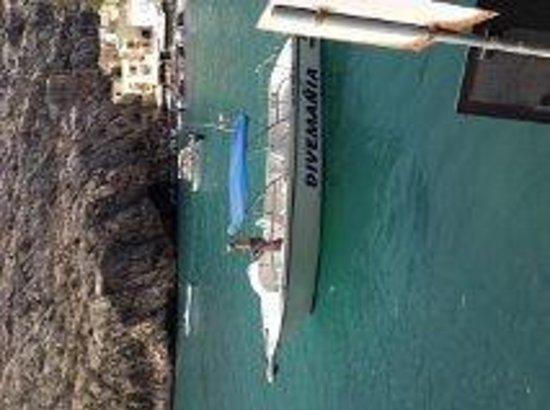 St. Andrew's Divers Cove: Le Divemania