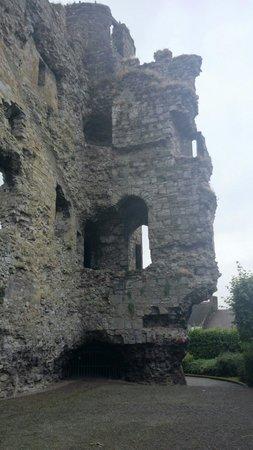 Carlow Castle: :)