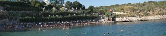 Didim Beach Resort & Spa: Пляж