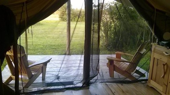 Oakwood Escape: Deck outside the tents. So relaxing! Oh mosquito net is great also!