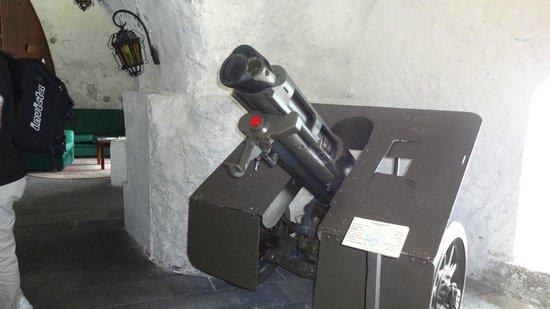 Museu Militar dos Acores: Cannoncino da Campo