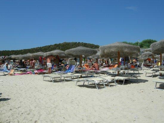 Spiaggia di Tuerredda: spiaggia attrezzata