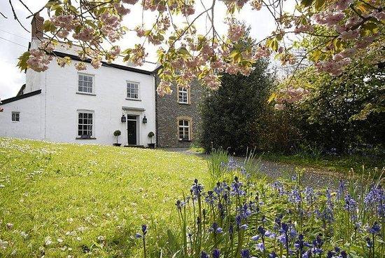 Glebe House Bed and Breakfast: Glebe House Outside & Garden