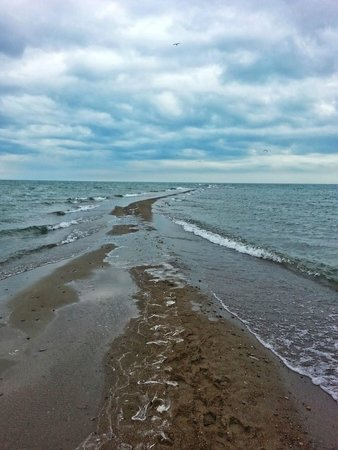 Point Pelee National Park: The tip of the point. I'm always amazed how much it changes