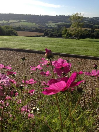 Odle Farm Holiday Cottages: View from Willow Cottage Patio in August