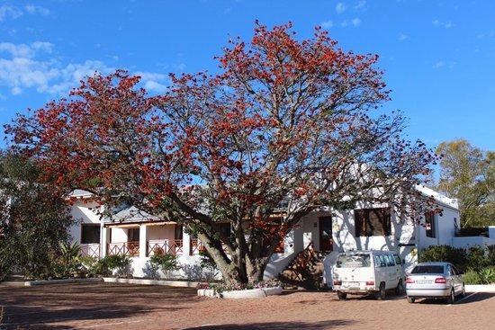 Assegaaibosch Country Lodge: Assegaaibosch Reception