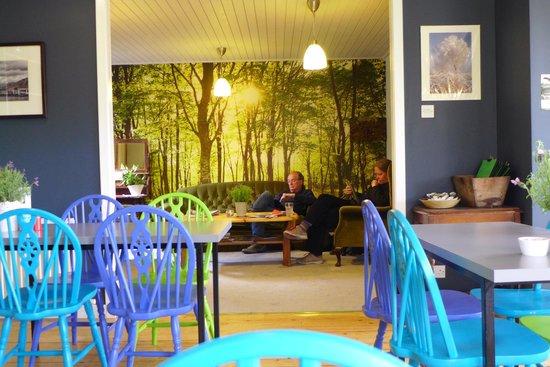 Blue Parrot Cafe