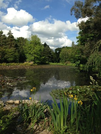 Lifehouse Hotel & Spa: Hotel Grounds