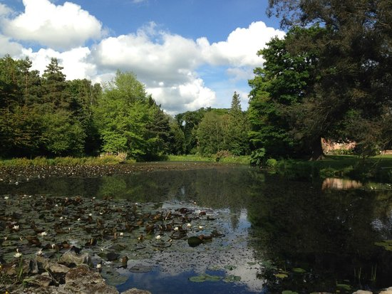 Lifehouse Hotel & Spa : Hotel Grounds