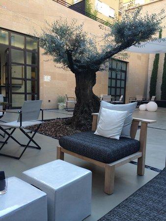 H10 Art Gallery : Garden terrace