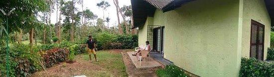 Machaan Nagarhole : Room
