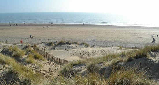 Camber Sands: Dunes and the sea