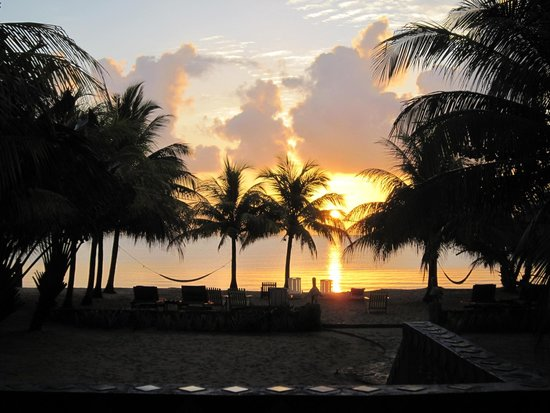 Coconut Row Guest House: Waking up and opening the door to this beautiful sunrise