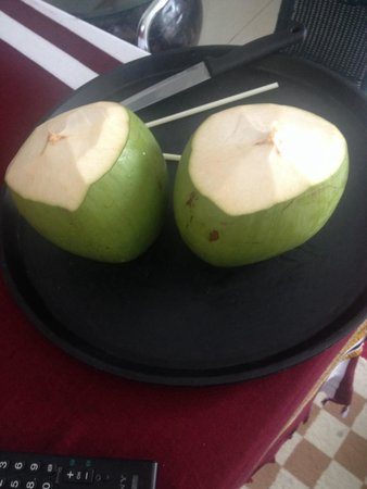 Ifja Inn: Coconut!