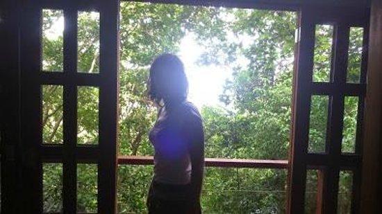 Luz en el Cielo Eco-B&B/Hostel: View of Private Cabina