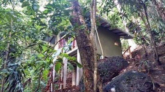 Luz en el Cielo Eco-B&B/Hostel: Private Cabina