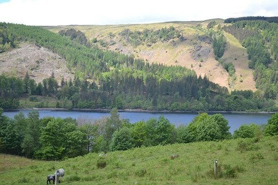 Ullswater Lake: Drive till the lake