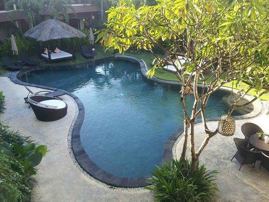 Villa Diana Bali: Pileta del hotel