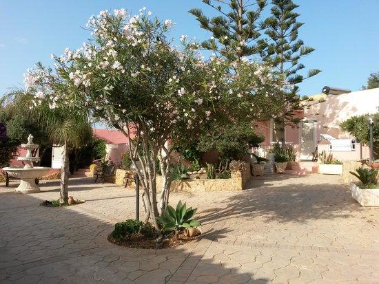 Villa delle Rose : Il cortile