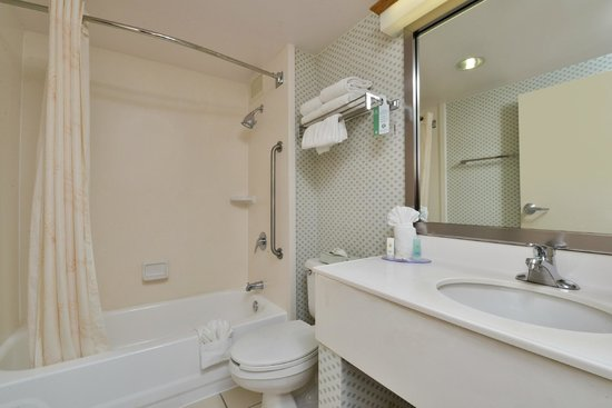 Comfort Inn Capital Beltway : Bathroom