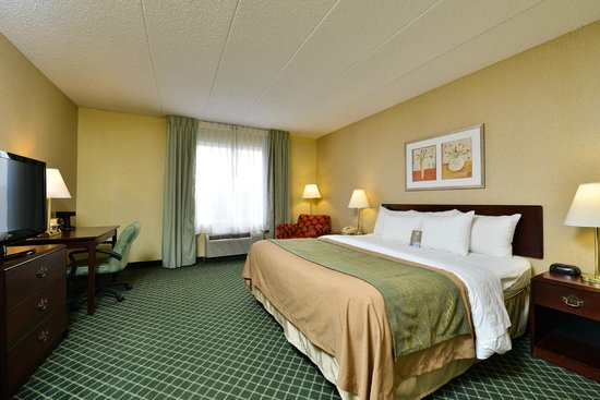 Comfort Inn Capital Beltway : King Room