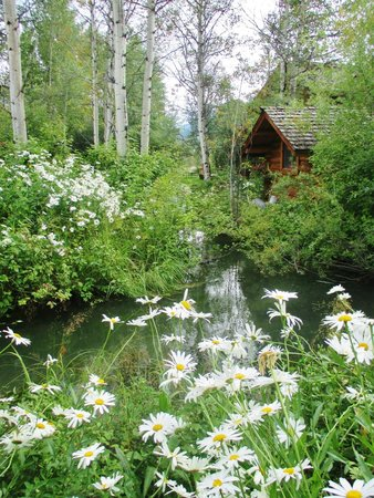 Wildflower Lodge at Jackson Hole: A beautiful look at the Wildflower Inn from surrounding grounds